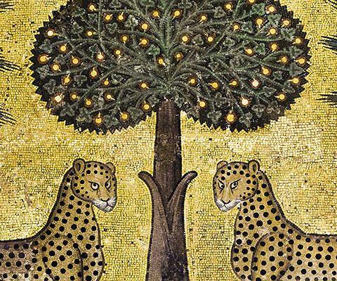 Un progetto nato in Sicilia dall'amore per la natura