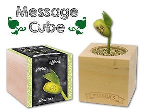 MessageCube • Fagiolo magico con messaggio