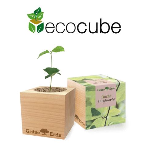 EcoCube personalizzato