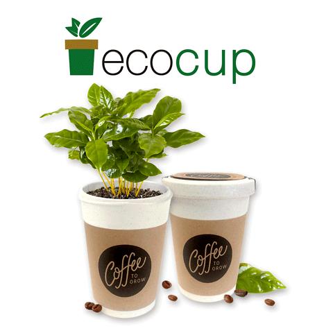EcoCup - Piante in tazza personalizzate