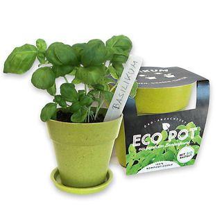 EcoPot • Piccolo vaso personalizzabile