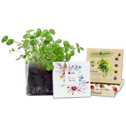 Instant Garden • Kit di coltivazione personalizzabile
